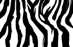 How to paint zebra stripes
