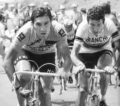 #Giro #1974 Eddy Merckx, Felice Gimondi