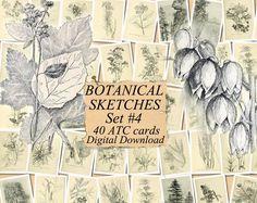 digital collage sheet 40 atc cards Printable Instant Download Image Digital Cards Tags vintage journals kit LADIES/' FLOWER GARDEN Set #4