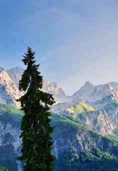 Valbona, Albanian alps. by Eni Shkembi