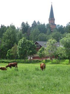 Toimiva Asikkala Asikkalan kylät   Asikkalassa on ollut yhteensä 24 kylää. Vääksyn kanavalla olevan Vaikeiden AikojenMuistomerkin ympärillä olevat paadet … Lue lisää Helsinki, Lonely Planet, Norway, Countryside, Beautiful Places, Barns, Nature, Nostalgia, Blessed