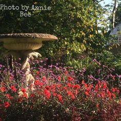 Swiss Garden at Shuttleworth, Old Warden, Bedfordshire The Visitors, Annie, Graphics, Garden, Outdoor Decor, Art, Art Background, Garten, Graphic Design