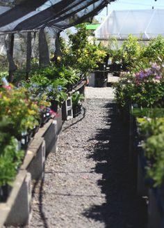 greensgrow farms philadelphia