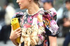 NobodyKnowsMarc.com Gianluca Senese milan fashion week eleonora carisi dolce&gabbana _thumb[2]