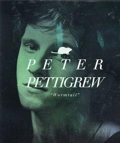 Petter Pettigrew Harry Potter Universal, Harry Potter World, Peter Pettigrew, Welcome To Hogwarts, All The Young Dudes, Harry Potter Artwork, Wolfstar, Marauders Era, James Potter