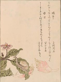 Snail by Utamaro, Ehon mushi erami. 2 : [Album des insectes choisis, par Utamaro. Volume 2]