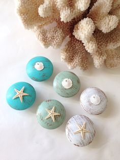 Distressed Nautical Knobs with Starfish and Sand Dollar on Etsy, $30.00