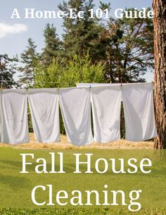 fall house cleaning guide