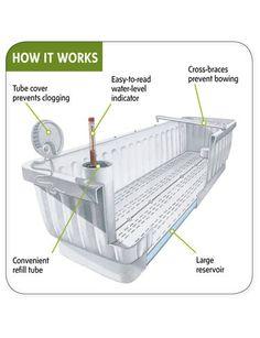 Window Boxes: Self-Watering Planters, 39 inches Aquaponics System, Aquaponics Diy, Hydroponic Gardening, Gardening Tips, Aquaponics Greenhouse, Hydroponic Systems, Urban Gardening, Window Box Flowers, Pot Jardin