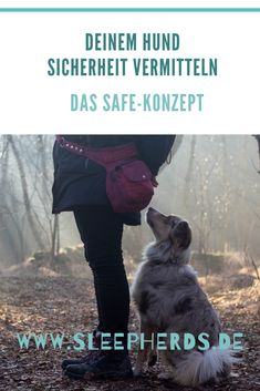 Give your dog security-Deinem Hund Sicherheit vermitteln Do you have an insecure dog and want to give him more security? I& give you some simple tips and show you what helped us. Training Tips, Dog Training, Dog Vector, Design Your Dream House, Diy Stuffed Animals, Shiba Inu, Dog Walking, My Animal, Dog Life