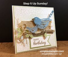Best Birds, Birds and Blooms, Stamping Up, Colory Theory DSP