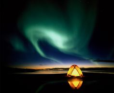 Camping under the northern lights with Marshall. As long as the bears don't get to us first :)