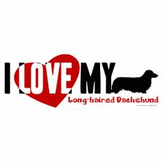 Dachshund [Long-haired] Cut Out Dachshund Breeders, Dachshund Puppies For Sale, Dachshunds, Photo Sculpture, Sculptures, Weiner Dogs, Long Hair Styles, My Love, Fun