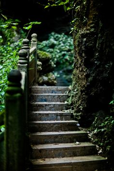 Shaded Stairs......