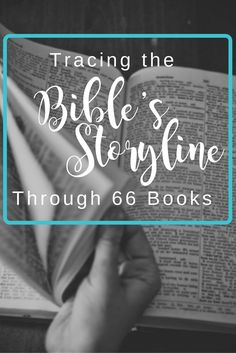 Overview of the Bible's storyline & how each book contributes