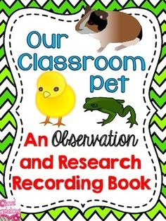 pets on pinterest class pet classroom pets and pet theme