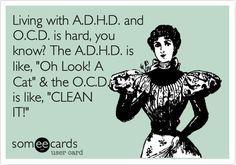 Living with A.D.H.D. and O.C.D. is hard, you know? The A.D.H.D. is like, 'Oh Look! A Cat' & the O.C.D. is like, 'CLEAN IT!'