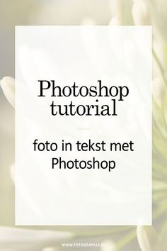 tutorial - meer diepte en focus in je foto - Fotografille Photoshop Tutorial, Cool Photoshop, Photoshop Brushes, Photoshop Design, Photoshop Actions, Lightroom, Photoshop Effects, Photoshop Website, Photoshop Projects