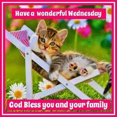 Have a wonderful Wednesday. .