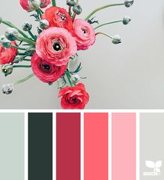 Flora Tones - https://www.design-seeds.com/in-nature/flora/flora-tones-25