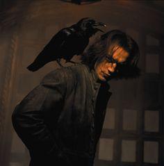 .The crow