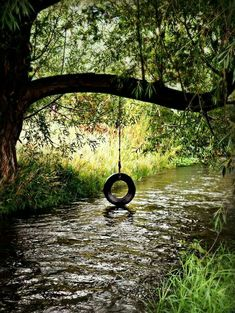 Tire swing over the stream. Tire swing over the stream. Country Life, Country Living, Country Roads, Country Farm, Beautiful World, Beautiful Places, Peaceful Places, Vie Simple, Farm Life