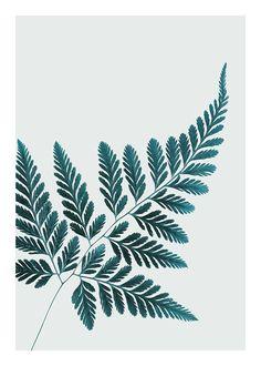 Schönes Botanik-Poster