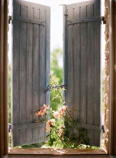 Flowers peeking through