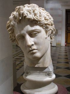 Head of Narcissus in the Hermitage Museum, St. Petersburg.