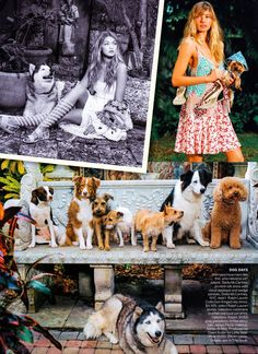 """Duchess Dior: """"Best in Show"""" Gigi Hadid, Andreea Diaconu and Jessica Hart by Bruce Weber for Vogue US April 2015"""