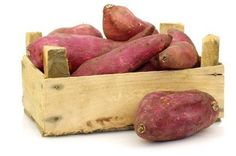 This guide is about growing sweet potatoes. Sweet potatoes are an important root crop around the world, but do not tolerate frost.