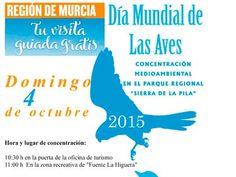 El domingo celebra el #DíaMundialdelasAves en la Sierra de la Pila con Ruta guiada y observación de aves.