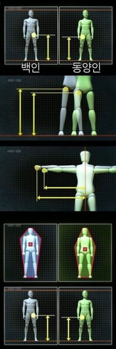 Anatomy, Knowledge, Behance, Technology, Humor, Drawings, Funny, Anime, Inspiration