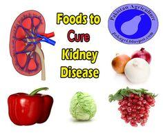Foods to Cure Kidney Disease