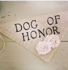 Include your dog in the wedding ceremony! They are family too! #weddings #dogs #family