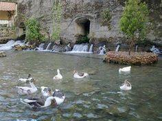 Nature in Syr village, north Lebanon