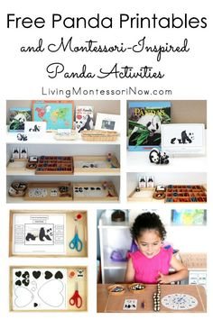Free panda printables and Montessori-inspired panda activities for multiple ages; perfect for home or classroom; great for Chinese New Year, China unit study, or bear unit study - Living Montessori Now Bear Activities Preschool, New Years Activities, Preschool At Home, Free Preschool, Preschool Kindergarten, Educational Activities, Preschool Ideas, Montessori Toddler, Montessori Homeschool