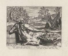 Johann Sadeler (I)   Herfst, Johann Sadeler (I), 1580 - 1584   Een naakte man zit op de voorgrond. Hij leunt op een ton met druiven. In zijn hand een druiventros. Hij is de personificatie van de herfst. Op de achtergrond menselijke activiteiten in de herfst. Links worden druiven geplukt. Rechts worden de druiven geperst en vervoerd. De prent heeft een Latijns onderschrift en maakt deel uit van een vierdelige serie met de seizoenen.