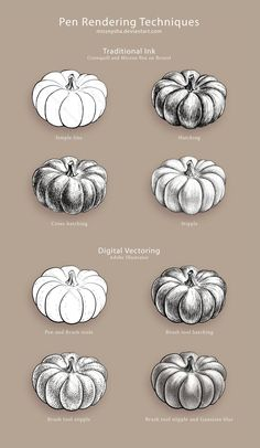 Pen Rendering Techniques by MissNysha on DeviantArt Rendering Techniques, Shading Techniques, Value Drawing, Basic Drawing, Pen Sketch, Sketches, Pumpkin Drawing, Value In Art, Watercolor Projects