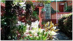 Casa Yolanda y Tomás, jardín. Vinales, Outdoor Structures, Plants, Home, Plant, Planets