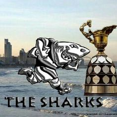Come on you Sharks ...