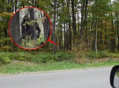 Andrei Stroganov claims that he saw the bigfoot when he visited Tsjeljabinsk but didn't want to tell anything about the details. Earlier this year DNA proof was shown.