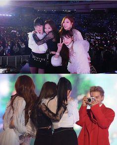 Mino taking a photo of Blackpink YG Family SBS Gayo Daejun 2017 Kpop Girl Groups, Korean Girl Groups, Kpop Girls, Kim Jennie, Yg Entertainment, 17 Kpop, Yg Artist, Blackpink Members, Blackpink Video