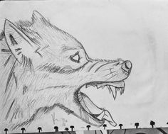 still learning how to sketching. i'm beginner and autodidact. and i was happy after finishing my sketch. #beginner #sketching #wolf #pencil #artwork