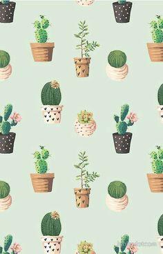 Backgrounds Cactus Background Floral Pastel Tumblr