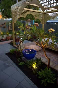 Lovely Frangipani, floating flowers and lights in the garden #pergola  #LandscapeDesignIdea