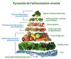 Pyramide de l'alimentation vivante