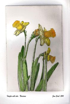 Flowers. Etching