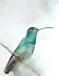 A simple and beautiful watercolor hummingbird sits on a branch.