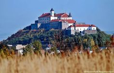 History and modern condition of town Mukachevo. Homeland, Monument Valley, Castle, Mansions, Country, House Styles, City, Places, Modern